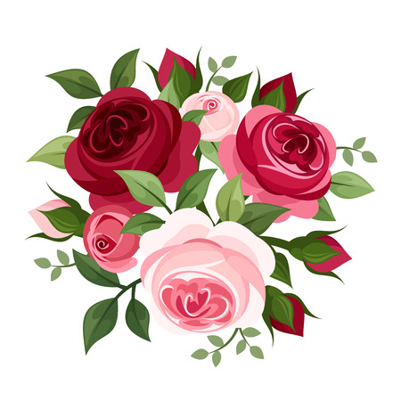 isolated roses: Red and pink roses  Vector illustration