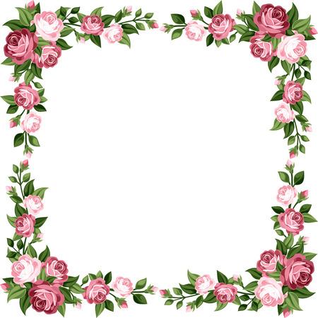 rose blanche: Trame de cru avec des roses rose Vector illustration