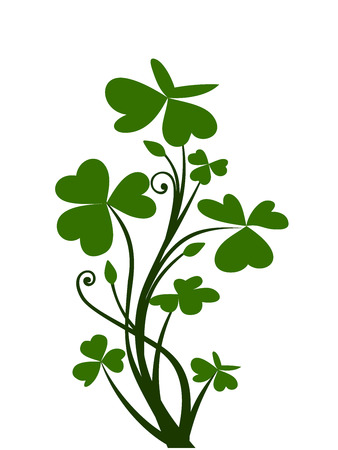st patrick s day: Branch of shamrock  Vector illustration