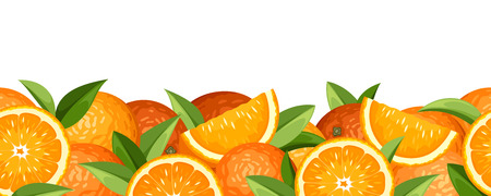 Horizontal seamless background with oranges  Vector illustration