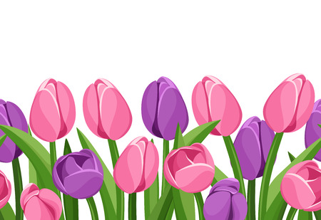 Horizontal seamless background with tulips  Vector illustration  Vector