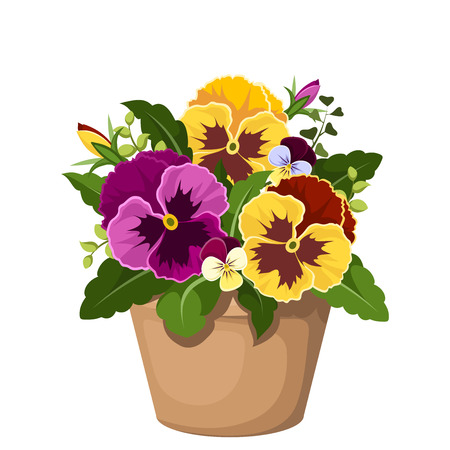 plant pot: Pansy flowers in a pot  Vector illustration