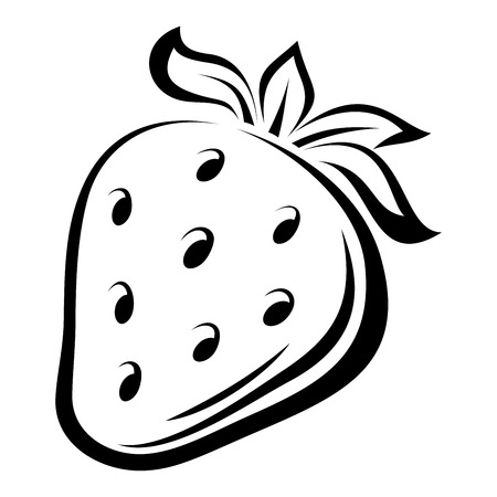 Contour drawing of strawberry  Vector illustration