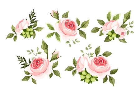 Set of pink roses  Vector illustration  Vector