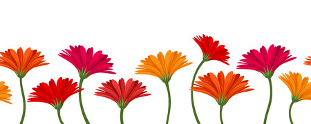 Horizontal seamless background with gerbera flowers  Vector illustration  Vector