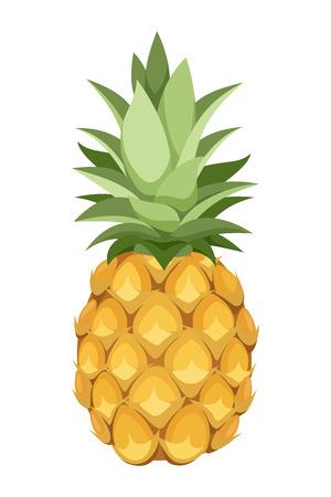 haulm: Pineapple  Vector illustration