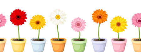 Gerbera in pots  Vector horizontal seamless background  Vector