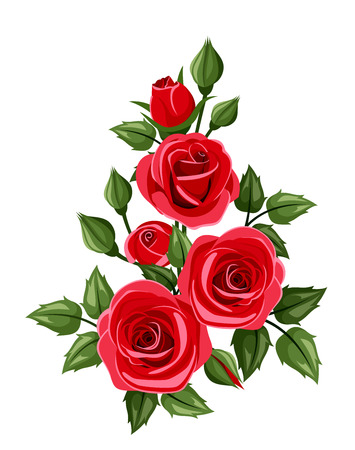 Branch of red roses  Vector illustration  Vector