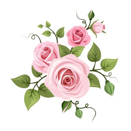 ramo de flores: Rosas de color rosa ilustraci�n Vectores