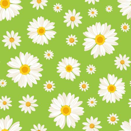 녹색 벡터 일러스트 레이 션에 데이지 꽃과 원활한 패턴
