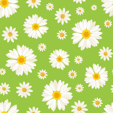Seamless pattern with daisy flowers on green Vector illustration