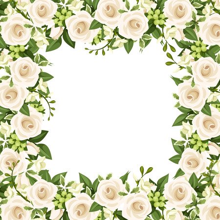 white rose: Vector background with white roses and freesia flowers