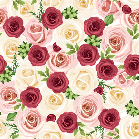 claret red: Seamless background with red, pink and white roses  Vector illustration  Illustration