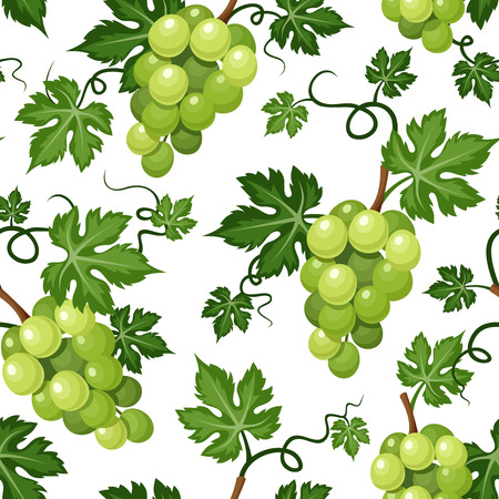 Seamless background with green grapes  Vector