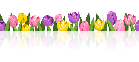 Horizontal seamless background with colorful tulips   Vector