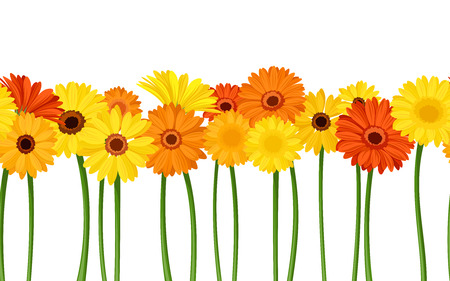 repetition row: Horizontal seamless background with gerbera flowers