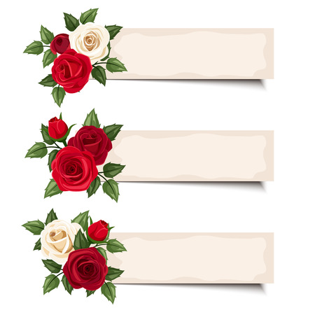 Three vector banners with red and white roses  Vector