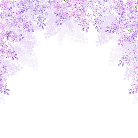 Background with lilac flowers  Vector illustration  Ilustração