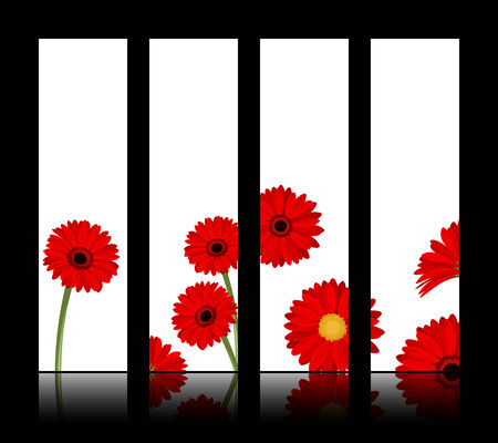 calendula flower: Vector white banners with red gerbera flowers