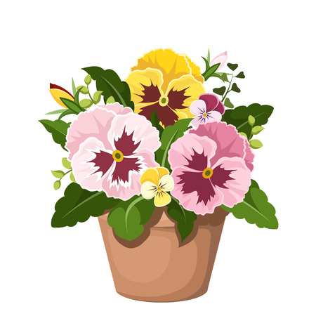 pansies: Pansy flowers in a pot  Vector illustration