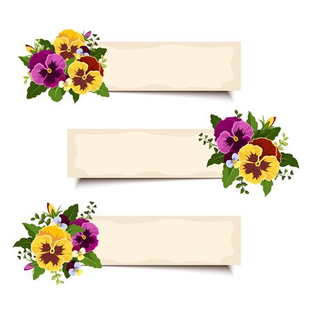 pansies: Three vector banners with pansy flowers