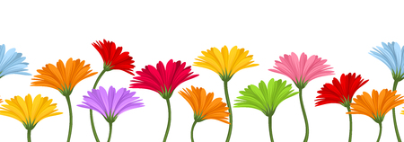 Horizontal seamless background with colorful gerbera flowers  Vector illustration  Vector