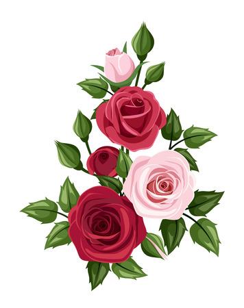Rose rosse e rosa, illustrazione vettoriale Vettoriali