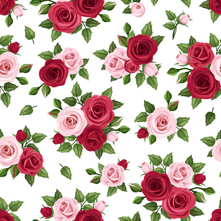 english rose: Seamless pattern with red and pink roses on white. Vector illustration. Illustration