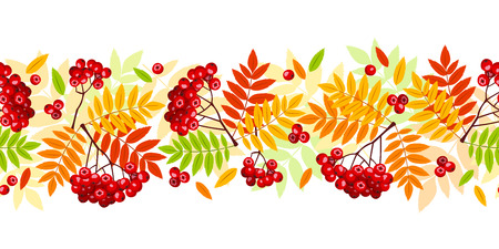 rowan: Horizontal seamless background with autumn rowan branches, leaves and berries. Vector illustration.