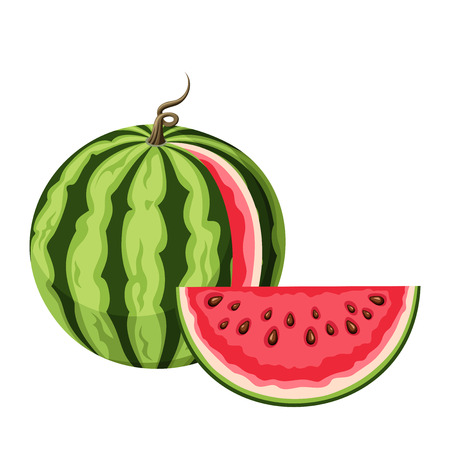 watermelon: Watermelon with a slice.