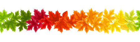 withered: Horizontal seamless background with autumn colorful maple leaves. Vector illustration.