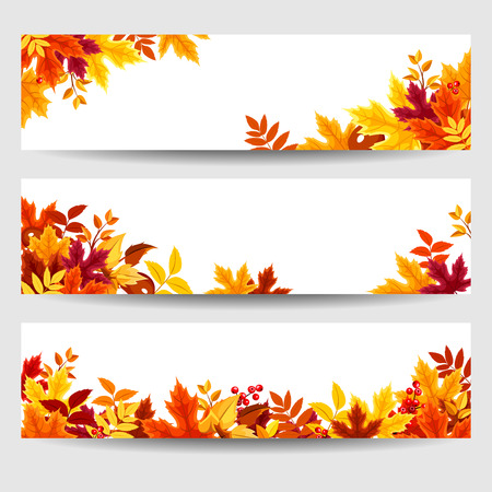 Vector banners with colorful autumn leaves. Çizim