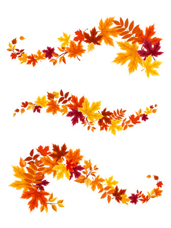 Autumn colorful leaves. Vector illustration. Çizim