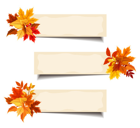 thanksgiving card: Vector beige banners with colorful autumn leaves.