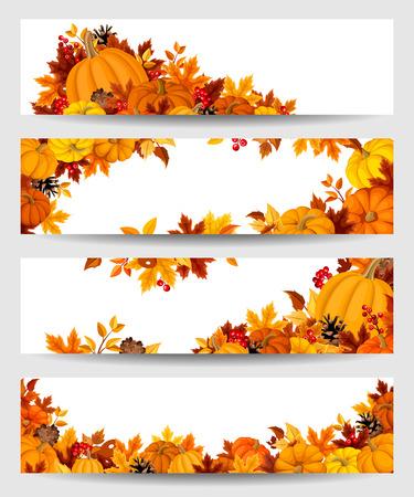 accion de gracias: Banderas del vector con las calabazas anaranjadas y hojas de oto�o.