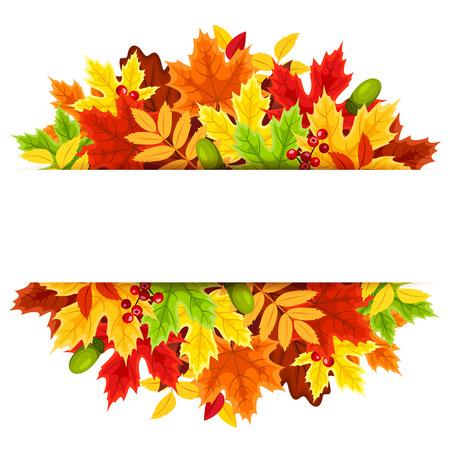 marcos decorativos: Fondo con las hojas de oto�o de colores.