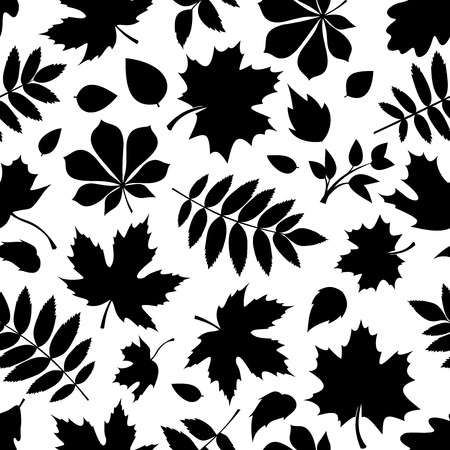 Seamless pattern with black silhouettes of autumn leaves on white Zdjęcie Seryjne - 32552817
