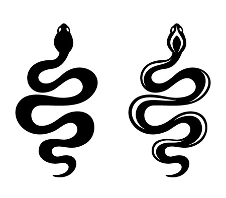 Snakes. Vector black silhouettes.