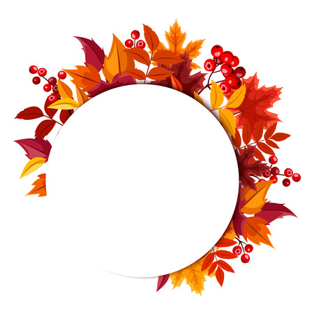autumn leaves falling: Background with autumn leaves.