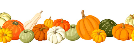 autumn harvest: Horizontal seamless background with colorful pumpkins. Vector illustration.