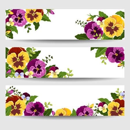 Banner mit bunten Stiefmütterchen Blumen. Standard-Bild - 35091237