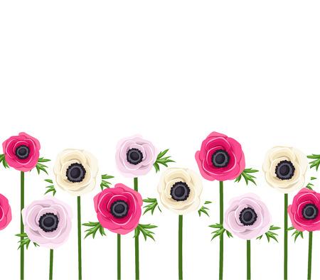 anemone: Horizontal seamless background with anemone flowers.