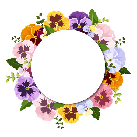pansies: Background with colorful pansy flowers. Vector eps-10.