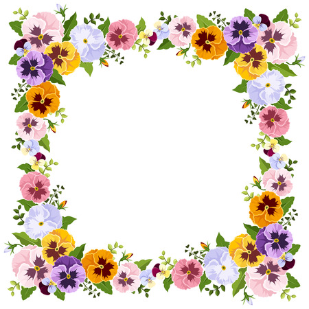 pansies: Frame with colorful pansy flowers. Vector illustration.