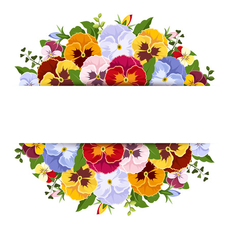 Background with colorful pansy flowers