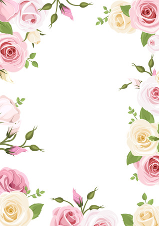 cenefas flores: Fondo con rosas rosadas y blancas y flores de lisianthus ilustración.
