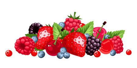 Berries isolated on white. Vector illustration.