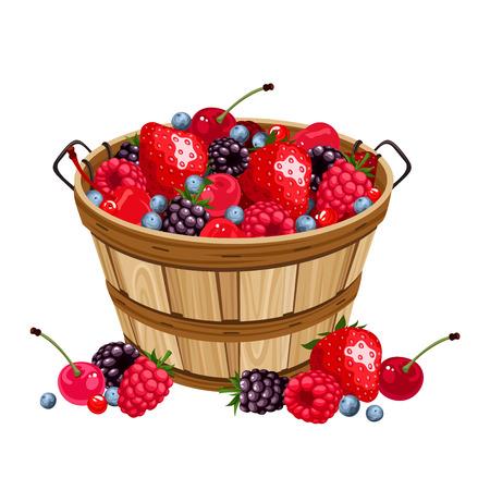 canastas con frutas: Cesta de madera con diversas bayas. Ilustración del vector.