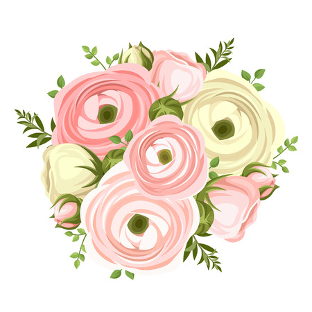 buttercup: Bouquet of pink and white ranunculus flowers. Vector illustration. Illustration
