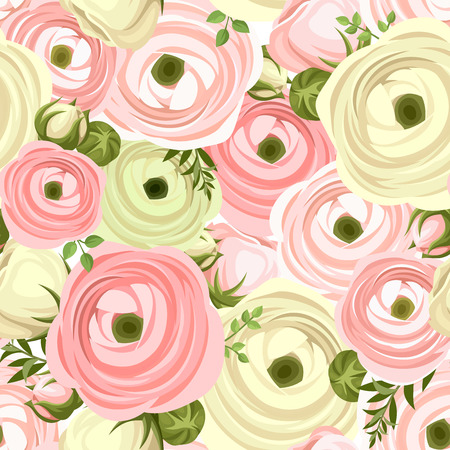 buttercup  decorative: Seamless pattern with pink and white ranunculus flowers. Vector illustration.